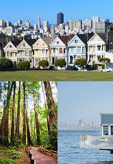 Combo Tour - SF City _ Muir Woods & Sausalito